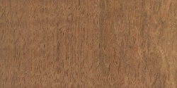 What Brazilian Cherry wood flooring looks like