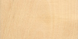 What Birch wood flooring looks like