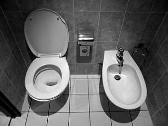 Bidet and regular toilet