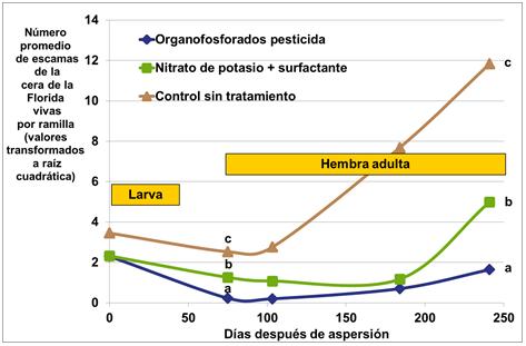 cítricos nitrato de potasio