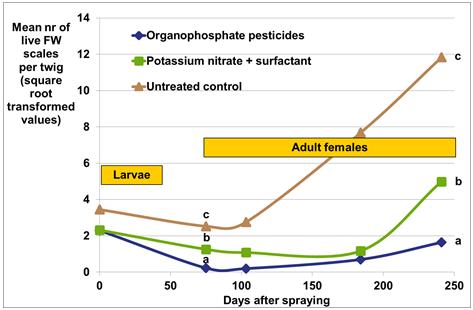 citrus potassium nitrate