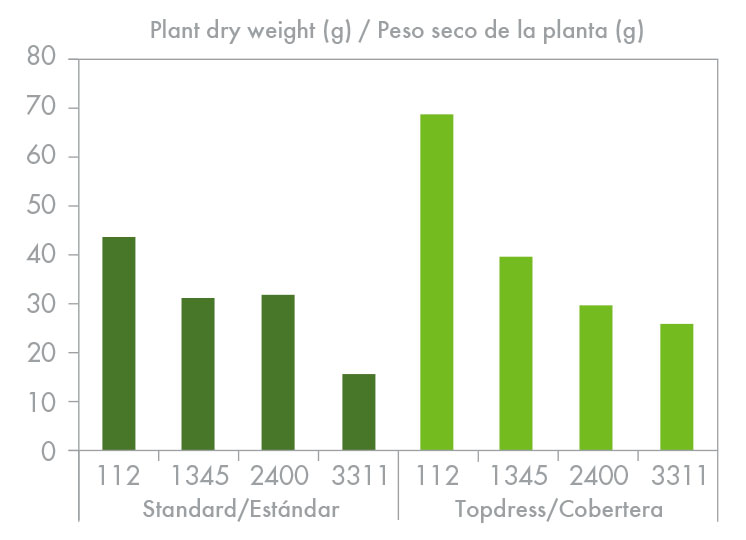 Figure 4. Whole plant dry weight in relation to treatment. Drainage degree is shown beneath each bar. Greatest dry matter accumulation occurred in the plants grown in the pots showing least drainage and topdressed with potassium nitrate.