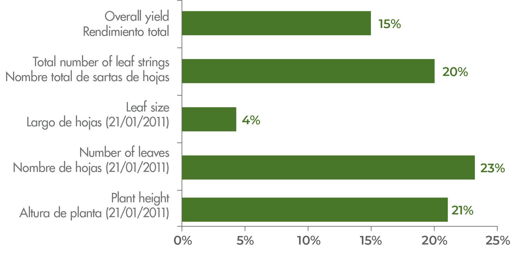 Aumenta el rendimiento (%) y crecimiento del tabaco como resultado del lado SQM, con aplicación de regadores y tratamiento soluble de NVE versus el tabaco con tratamiento de fertilizantes granulados aplicado de la mano de los productores.