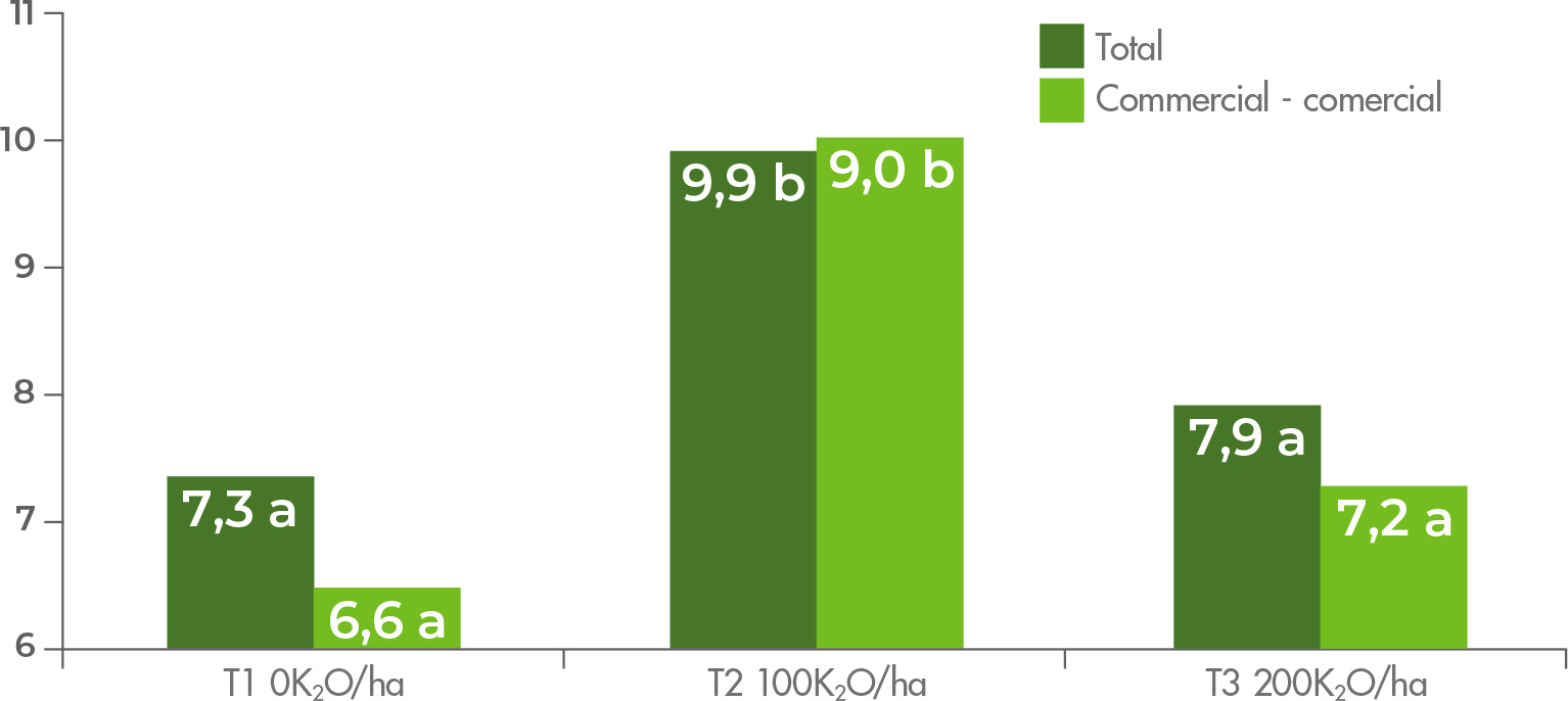 Total and commercial grape yield (kg/plant).