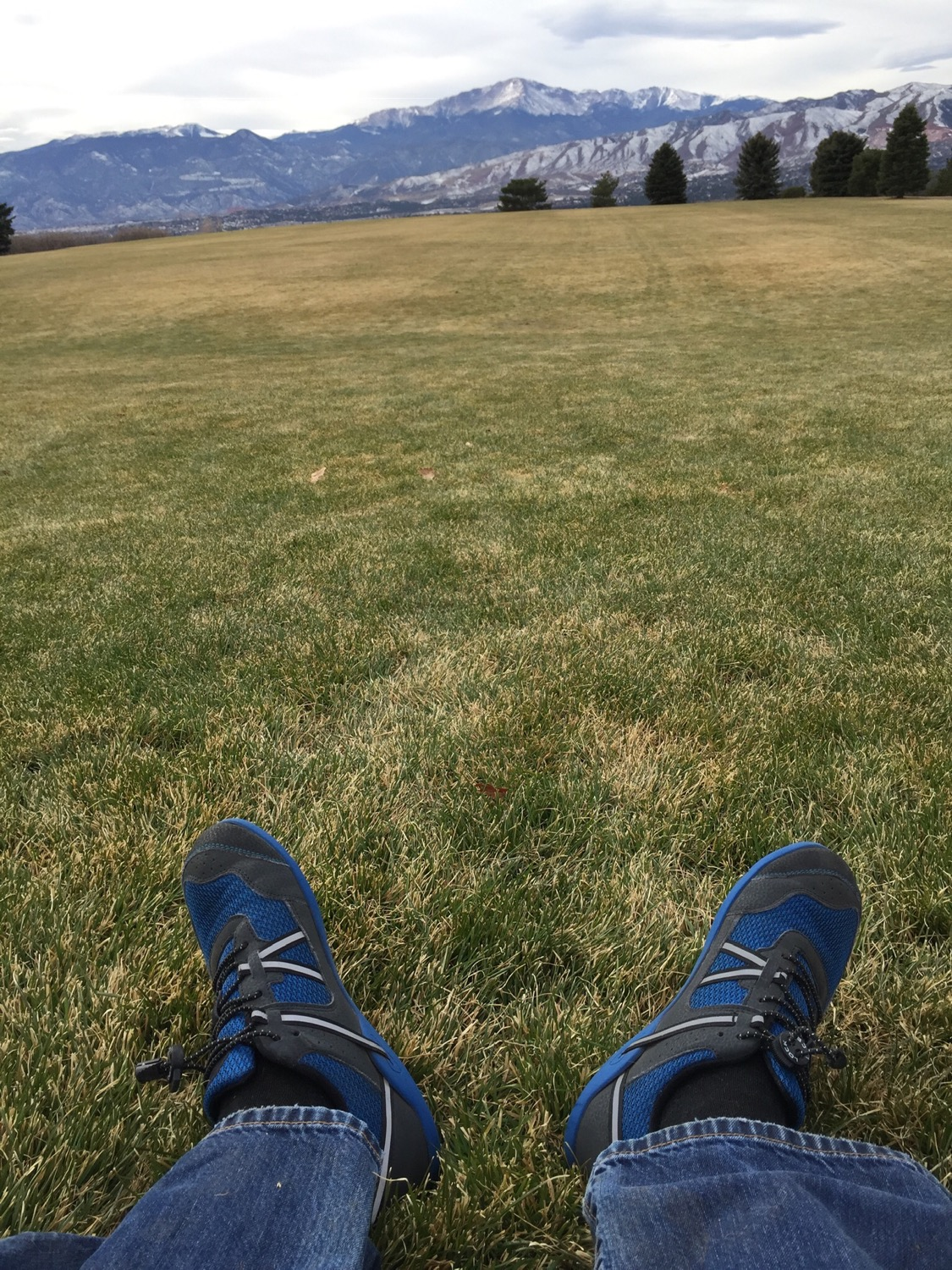 2f832bef4b I purchased my blue Prio xero shoes in store before Thanksgiving last month  and have hardly taken them off! I run 2.25 + every day in them and wear  them for ...