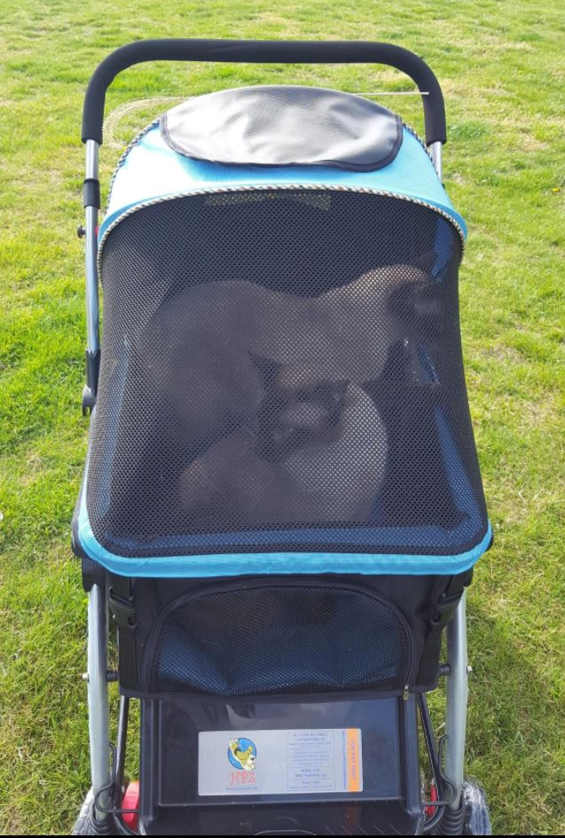 Blue No-Zip Stroller for Small, Medium & Large Pets (Dogs ...