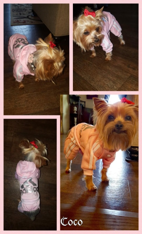 Pink Puppy Hoodies Coat Winter Sweatshirt Adidog Pet Warm Sweater