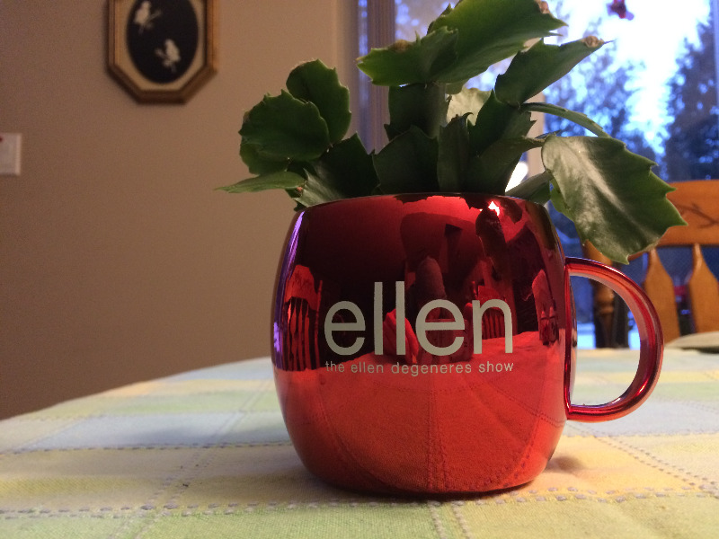ellen Show Holiday Mug