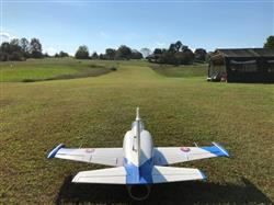 George B. verified customer review of Freewing L-39 Albatros 80mm EDF Jet - ARF PLUS