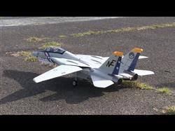 Brian K. verified customer review of Freewing F-14 Tomcat Twin 80mm EDF Jet - PNP