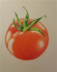 Vicki A. verified customer review of Jumpstart Level 1: Ripe Tomato in Colored Pencil
