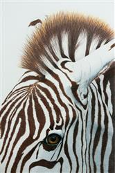 Barbara C. verified customer review of Jumpstart Level 2: Zebra in Colored Pencil