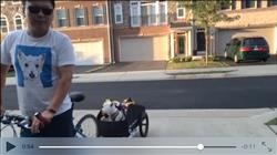 John L. verified customer review of Burley Nomad Bike Cargo Trailer