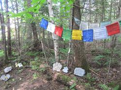 Manjushri Tibetan Prayer Flags Set of 10