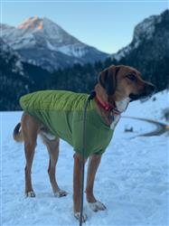 Ashlyn C. verified customer review of Powder Hound™ Jacket