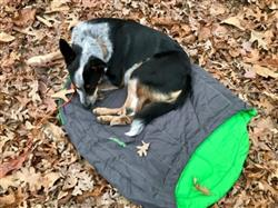 Sarah B. verified customer review of Highlands™ Sleeping Bag