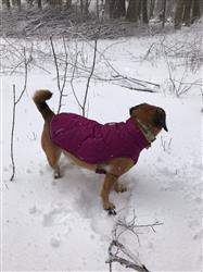 Kelly K. verified customer review of Quinzee™ Jacket
