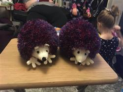 mary a. verified customer review of Hedgehog in King Cole Tinsel Chunky and King Cole Dollymix DK (9015)