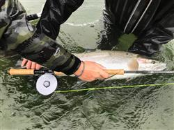 David K. verified customer review of Epic DH13 Two Handed Spey Rod