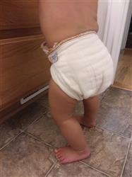 Cloth-eez Prefold Diapers - Unbleached