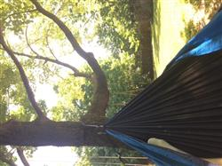 Caleb V. verified customer review of Double Lightweight Camping Hammock & Tree Straps