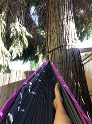 Stacey l. verified customer review of Double Lightweight Camping Hammock & Tree Straps
