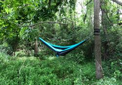 Taylor L. verified customer review of Double Lightweight Camping Hammock & Tree Straps