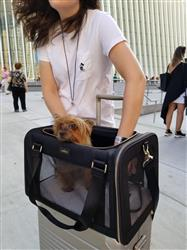 Sofia Von Hauske verified customer review of The Pet Carrier