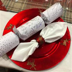 Scott H. verified customer review of Argon Tableware Set of 6 Decorative Napkin Rings - Red