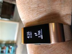 Sharon A. verified customer review of Milanese Loop Fitbit Charge 2 Bands