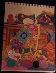 Anonymous verified customer review of Colorful Quilts Illustrated by Stevan Kasih