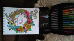 Diana S. verified customer review of 48 Colored Ink Refills For ColorIt Gel Pens