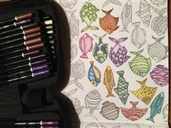 Premium 72 Colored Pencil Set With Case and Sharpener