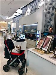Amazon V. verified customer review of PET ROVER™ Premium Stroller for Small/Medium/Large Dogs, Cats and Pets (Red)