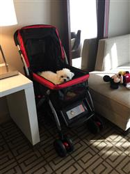 Elizabeth S. verified customer review of PET ROVER™ Premium Stroller for Small/Medium/Large Dogs, Cats and Pets (Red)