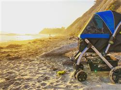 Mary B. verified customer review of PET ROVER™ Premium Stroller for Small/Medium/Large Dogs, Cats and Pets (Sky Blue)