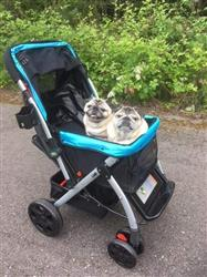 Amazon V. verified customer review of PET ROVER™ Premium Stroller for Small/Medium/Large Dogs, Cats and Pets (Sky Blue)