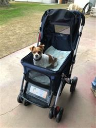 PET ROVER™ Premium Stroller for Small/Medium/Large Dogs, Cats and Pets (Navy Blue)