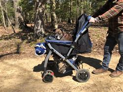 Anonymous verified customer review of PET ROVER™ Premium Stroller for Small/Medium/Large Dogs, Cats and Pets (Navy Blue)
