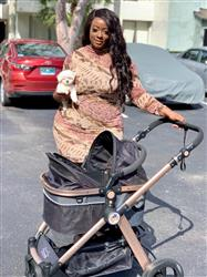 Ju verified customer review of PET ROVER PRIME™ Luxury 3-in-1 Stroller for Small/Medium Dogs, Cats and Pets (Black)