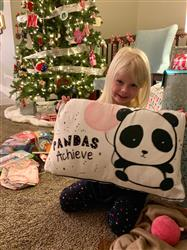 Heidi A. verified customer review of ACHIEVE Panda Pillow w/ Reversible Bold Black and White Sequins
