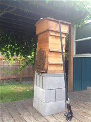 Colin D. verified customer review of Warre Hive Box