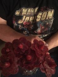Shelly S. verified customer review of Beef Jerky Flower Bouquet & Beer Mug
