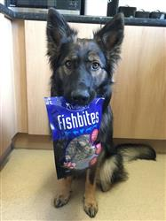 Heidi verified customer review of Fishbites 75g