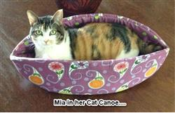 Sandra B. verified customer review of Cat Canoe modern cat bed in teal caret print