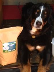 Usha K. verified customer review of Lucky's Peanut Butter Cookies<br>2lb Bag