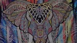 Tina Lytton verified customer review of Elephant Mandala Tapestry
