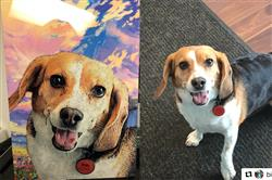 Alexandria P. verified customer review of Themed Portrait: The best therapist has fur & four legs