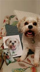 patrice s. verified customer review of Hand Drawn Portrait - 1 Dog