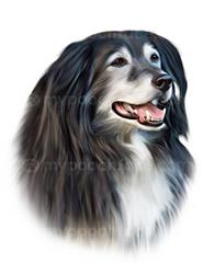 Liz J. verified customer review of Digitally Drawn Portrait - 1 Dog